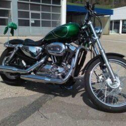 Cruiser-Harley---Sportster-1200-Custom